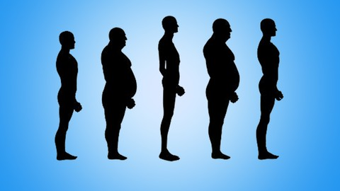 [Udemy Coupon] Determine your body type