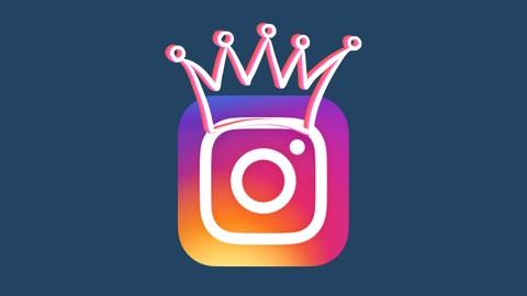 Netcurso-instagram-para-emprendedores-empresas-y-negocios