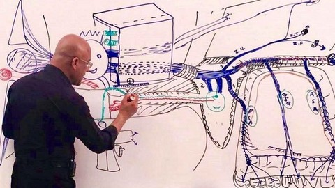 Master Neuroscience and Neuroanatomy.