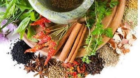[Udemy Coupon] Learn about herbs