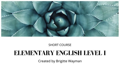 [Udemy Coupon] Elementary English Level I: Short Course