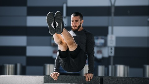 [Udemy Coupon] Intro to Calisthenics & Bodyweight Training with Carlito