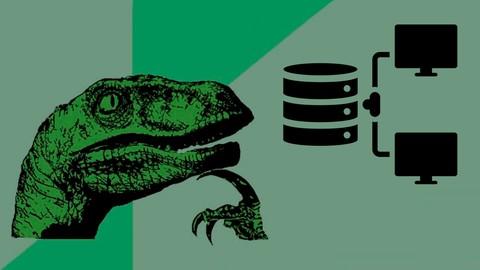 2619572 7be0 3 SQL для начинающих: с нуля до сертификата Oracle