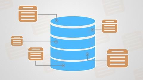 Netcurso-database-design-and-management
