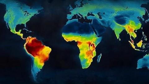 जैव विविधता और संरक्षण अध्ययन के लिए एस.आई.जी.