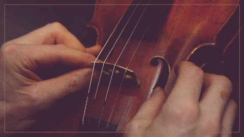 Beginner Violin 101: Care, Maintenance, and the Right Gear