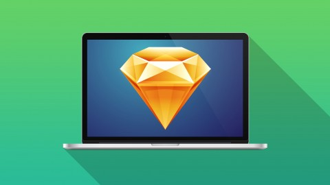 Netcurso-learnsketch3