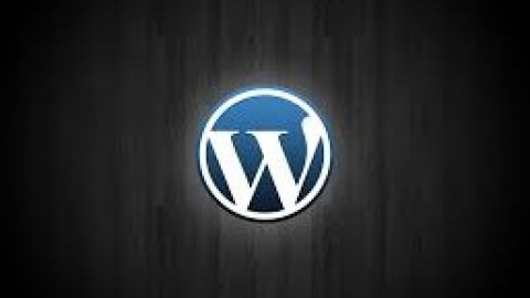Netcurso-wordpress-para-novatos