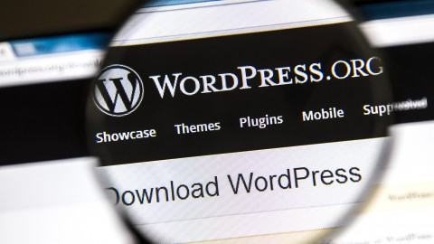 [Udemy Discount Coupon] – WordPress for Beginners – Domain Hosting Install in 30 Min