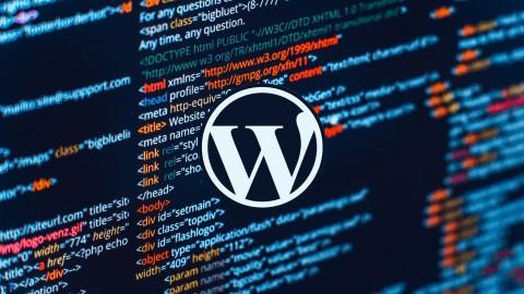 Netcurso-wordpress-create-professional-wordpress-websites-no-coding
