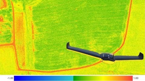 Netcurso - //netcurso.net/uav-drones-agricultura-de-precision