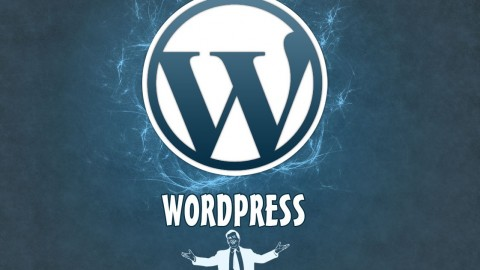 Netcurso-curso-webmaster-wordpress-nivel-1