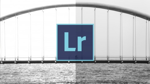 [100% Off Udemy Coupon] Lightroom 5 Photographer Workflow