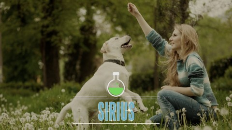 Science-Based Dog Training (with Feeling) - All 3 Days