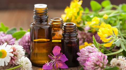 [Udemy Coupon] Essential Oils and Healthy Menopause