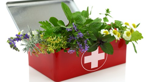 Herbalism :: First Aid Remedies [Certificate]