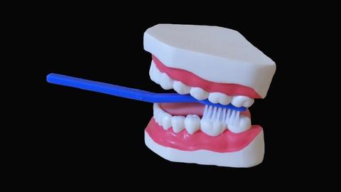 15 Ways to Save Hundreds of Dollars on Dental & Oral Health