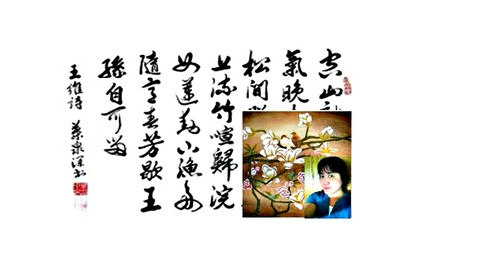 College Mandarin Chinese Course on Your Own--Beginning Level