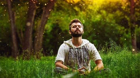 Netcurso-meditation-einfach-lernen
