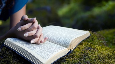 [Udemy Coupon 100% OFF] – Learn to Become a Bible Study Pro! (All levels)