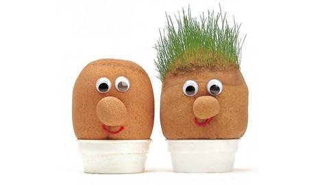 Netcurso - //netcurso.net/como-combatir-la-alopecia-y-restaurar-la-salud-capilar