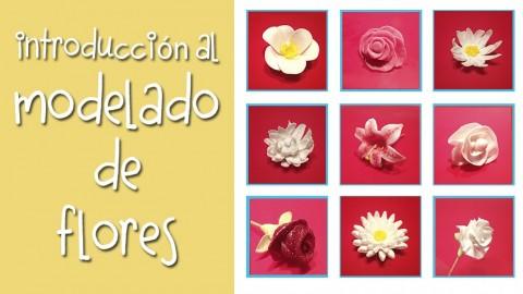 Netcurso-modelado-de-flores