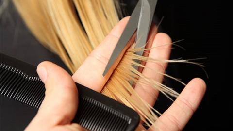 Netcurso - //netcurso.net/curso-de-estilista-peluqueria
