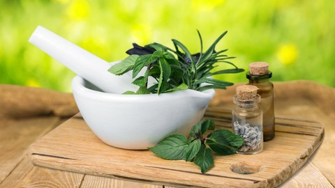 Herbalism :: Introduction & Medicine Making Course