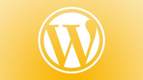 Netcurso-wordpress-la-guia-para-novatos