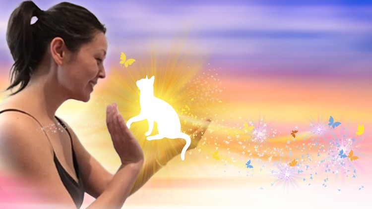 Animal & Pet Reiki Energy Healing Certification Course
