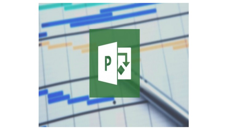 MS PROJECT 2013  | Udemy