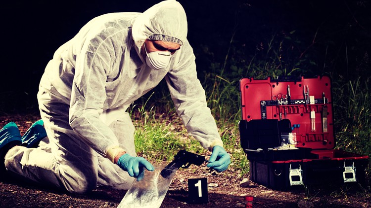 Forensic Psychology Certificate Udemy