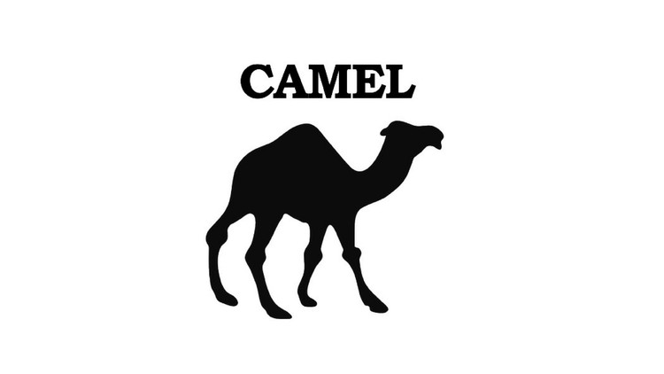 Apache Camel for Beginners - Learn by Coding in Java | Udemy