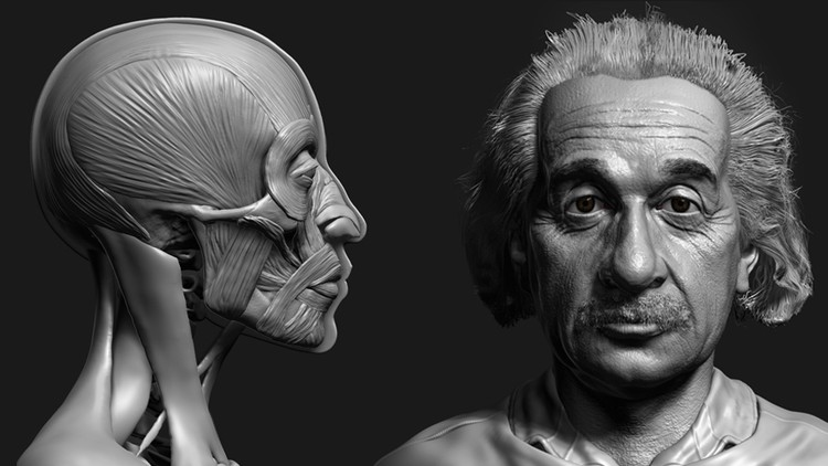 Zbrush Facial Anatomy and Likeness Character Sculpting | Udemy