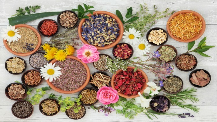 Fully Accredited Foundation Diploma Course in Naturopathy