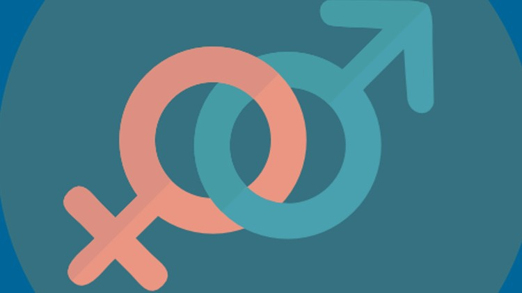 Fundamentals of Gender Equality   Udemy