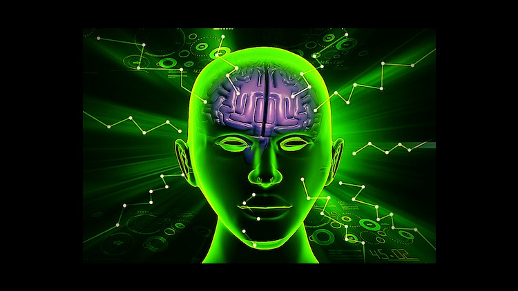 Neuroplasticity Begin To Change Life >> Neuroplasticity Rewire Your Brain For Ultimate Success Udemy