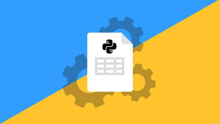 Master Python and Excel: File Automation with OpenPyXL | Udemy