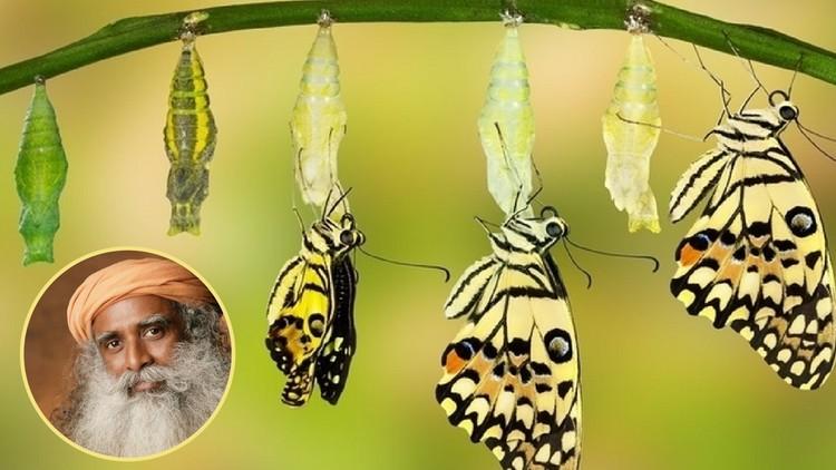 Isha Kriya: A Powerful Meditation for Self Transformation | Udemy