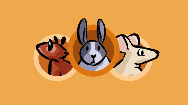 How to Draw a Bunny and Rodents | Master Drawing Animals | Udemy