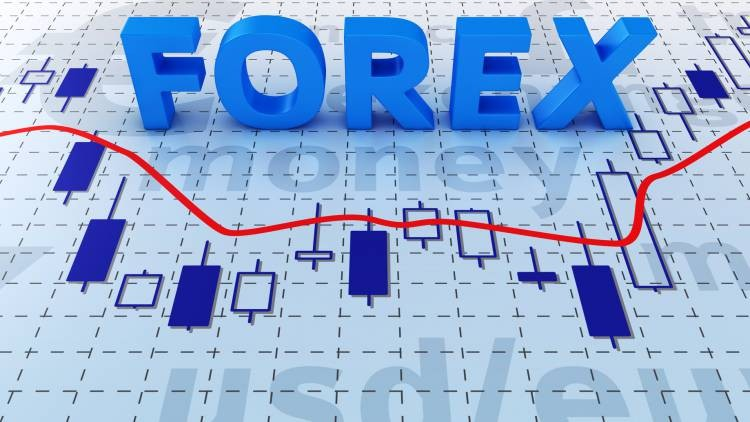 Learn Forex Trading In Two Weeks Udemy