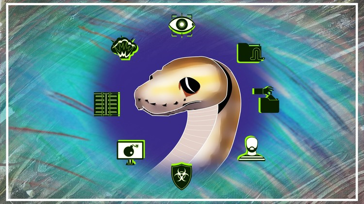 Introduction to Python and Hacking with Python | Udemy
