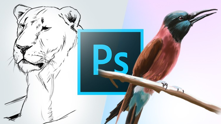 Learn How to Draw and Paint in Photoshop | Udemy