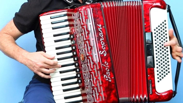 Learn To Play A Celtic Irish Reel On The Piano Accordion   Udemy