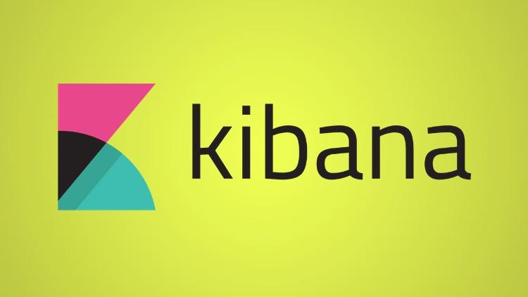Kibana Visualization Beginner To Pro (ELK & ElasticSearch) | Udemy