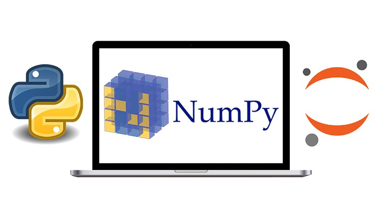 Complete NumPy Masterclass: Go from Zero to Hero in Numpy | Udemy