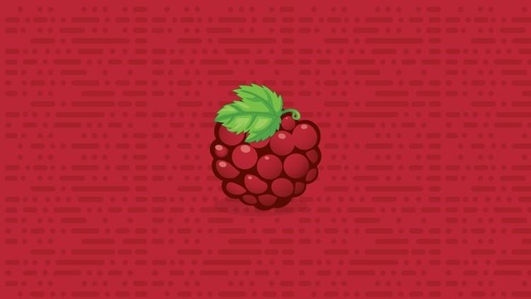 Learn Raspberry Pi | Udemy