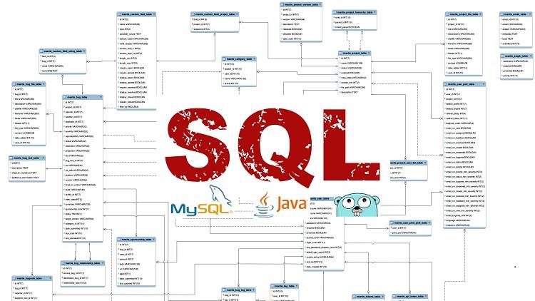 Mastering SQL (Using MySQL, Java, and Go)   Udemy