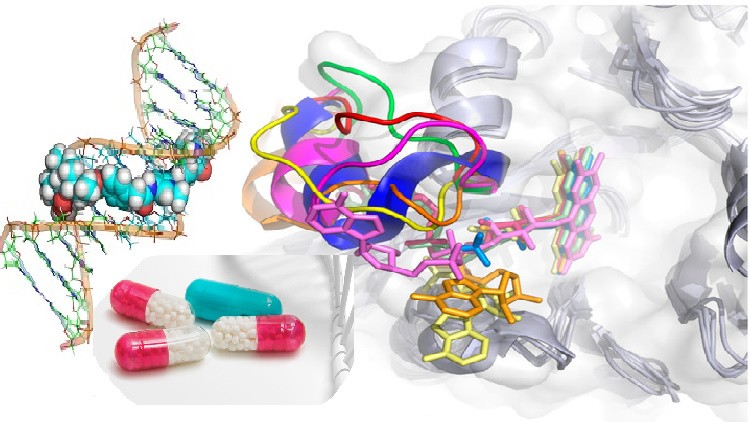 Biology, Nanochemistry and Drug Discovery: The Hidden Holism