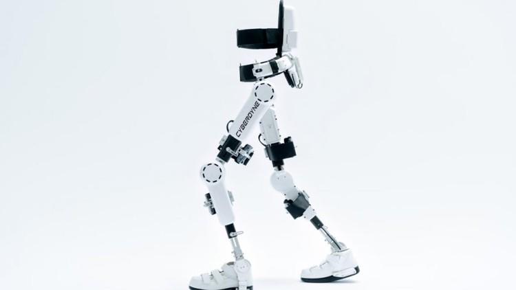 Wearable Robotics-Exoskeletons (Lower Limb)